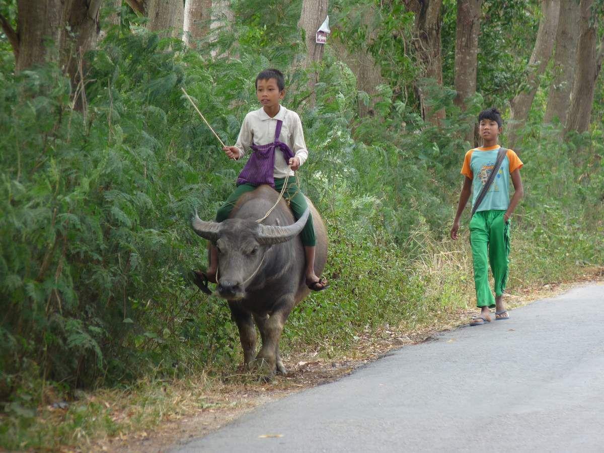 Promenade en vélo dans les villages autour de Nyaung Shwe