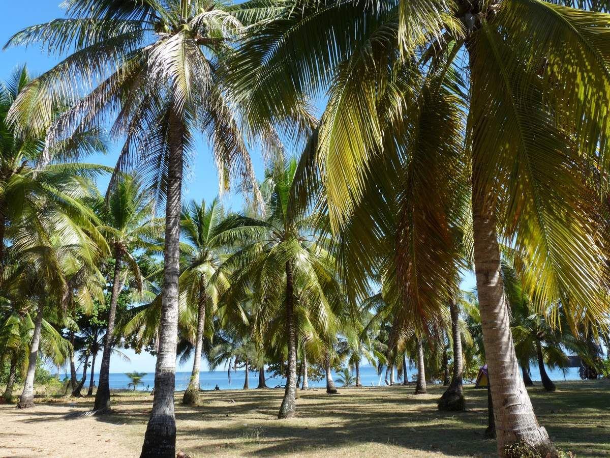 Koh Bulon Leh : la belle plage de Sheoak Forest et les concours de sculpture sur sable