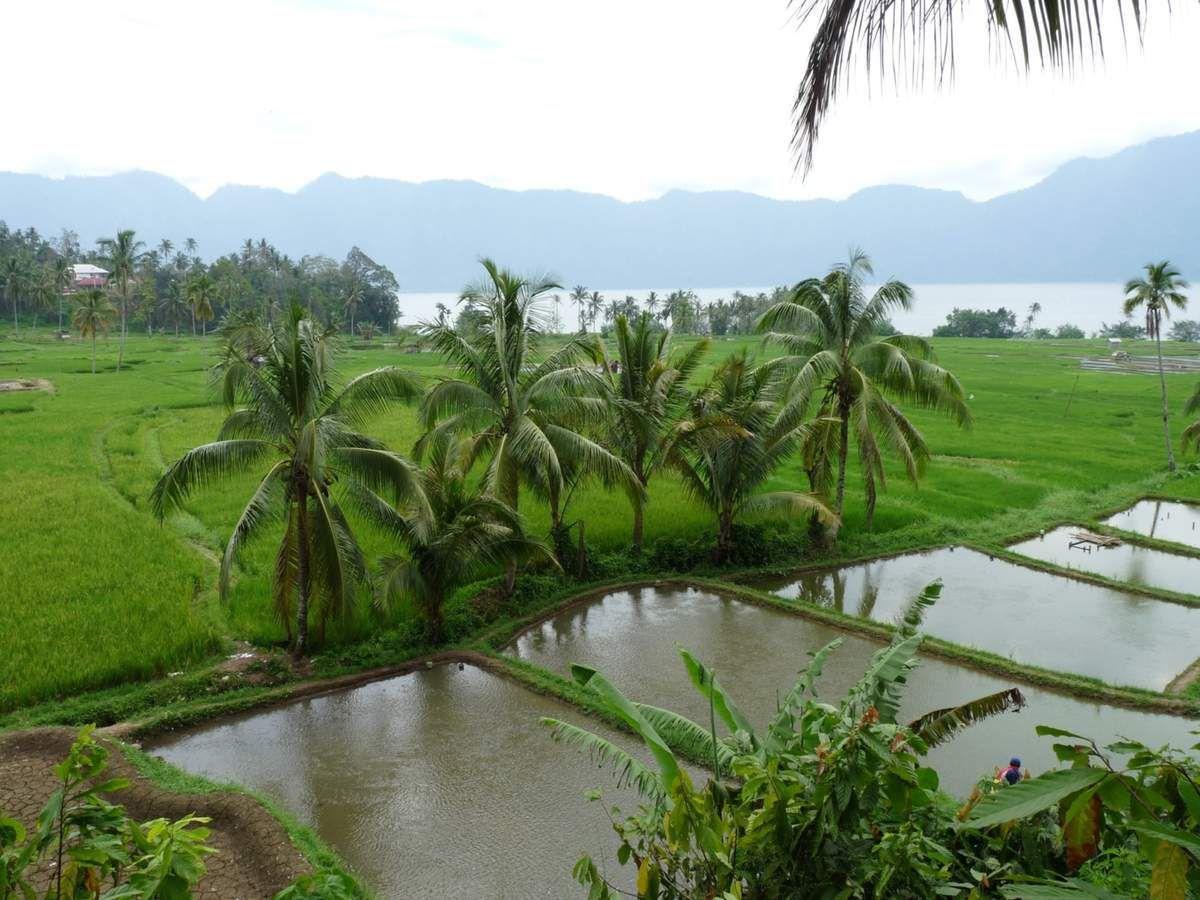 Sumatra : Lac Maninjau, pendant notre tour du lac en scooter