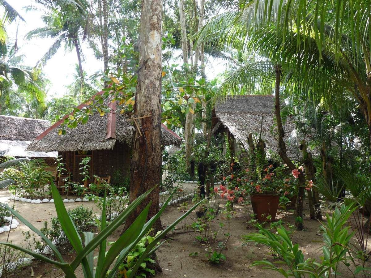 Île de Negros : notre pension coup de coeur sur Sugar beach, le Driftwood village