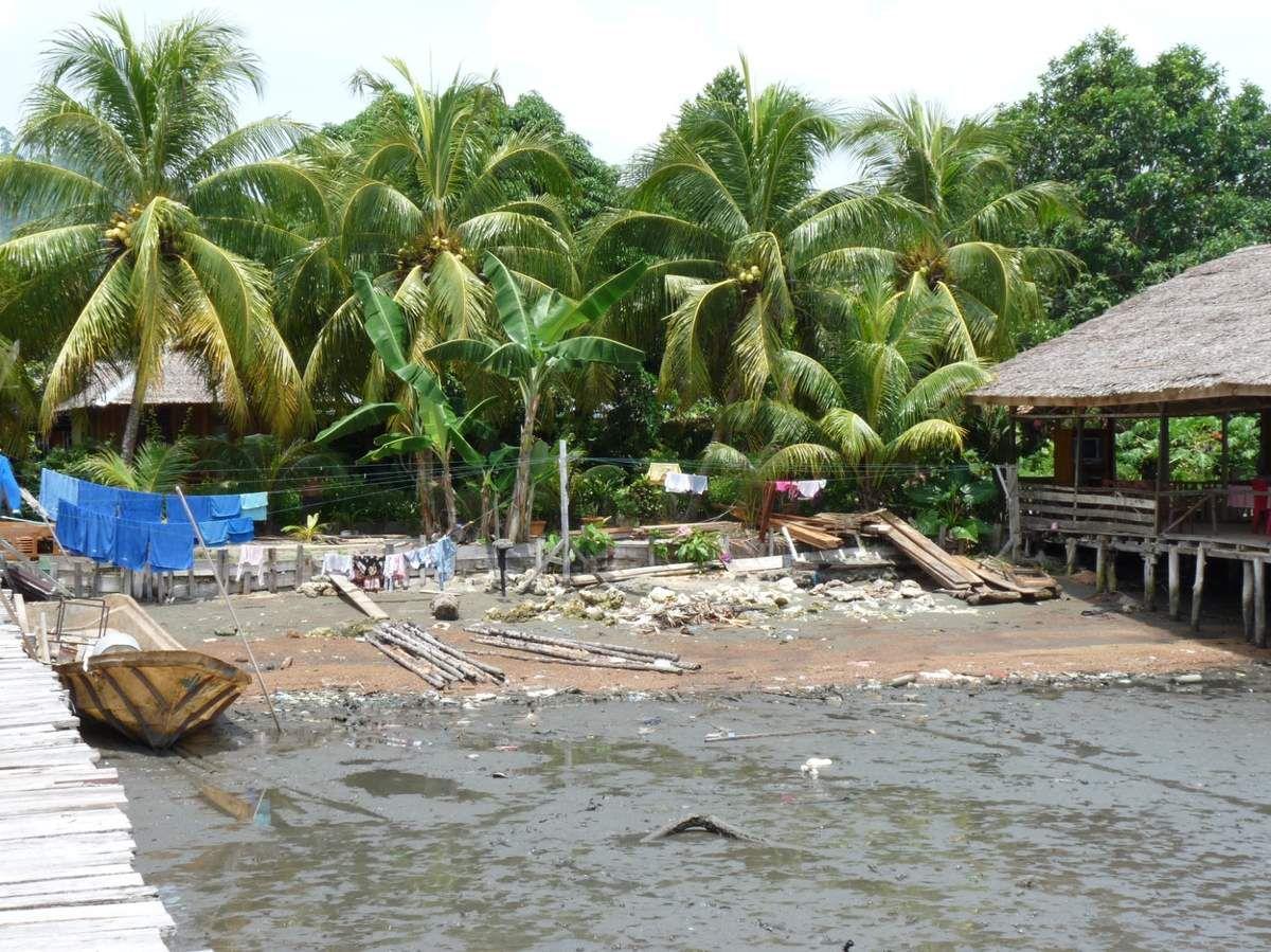 Sulawesi / Togean Islands - Wakai