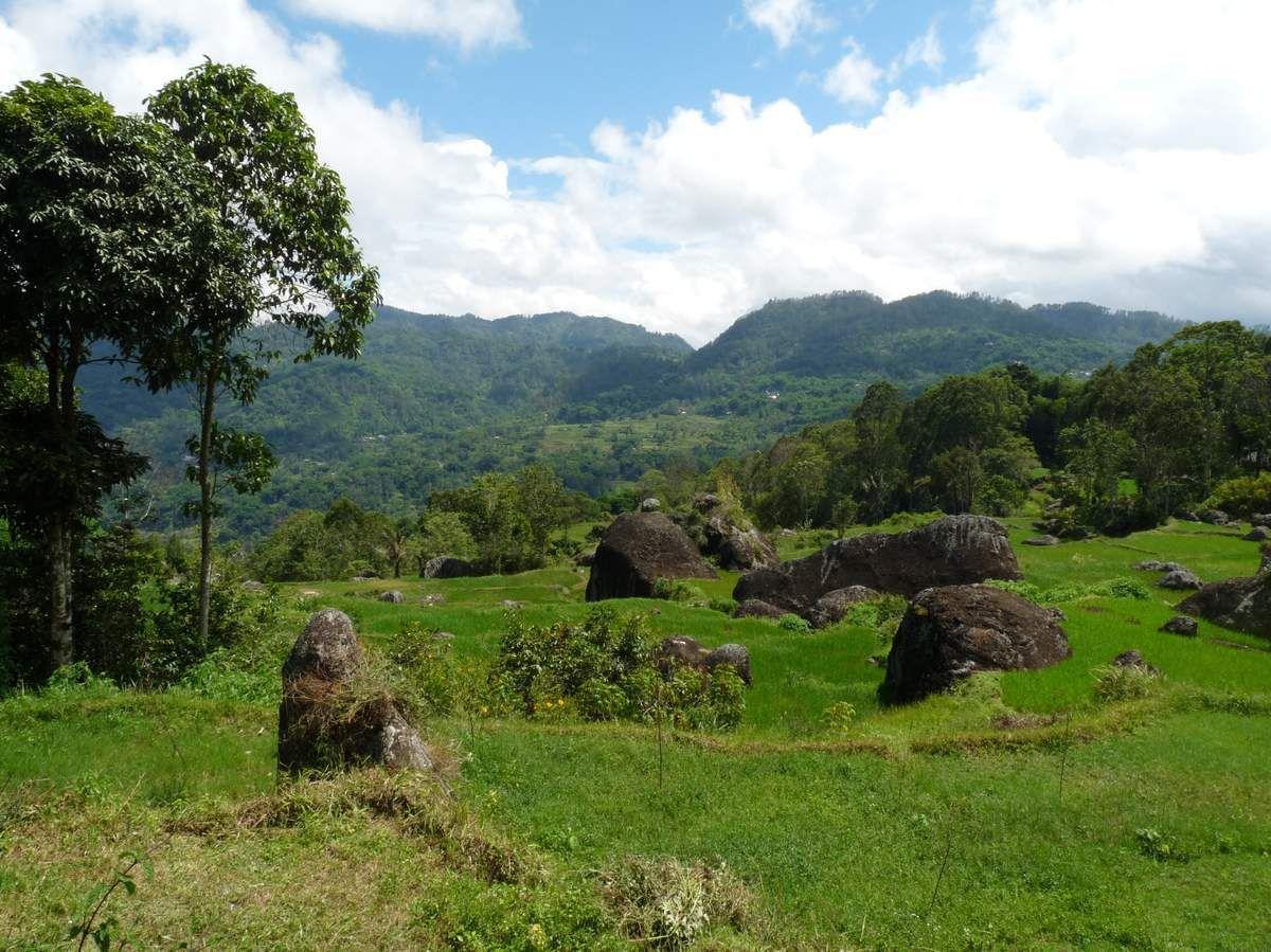 Batutumonga, au Nord de Rantepao