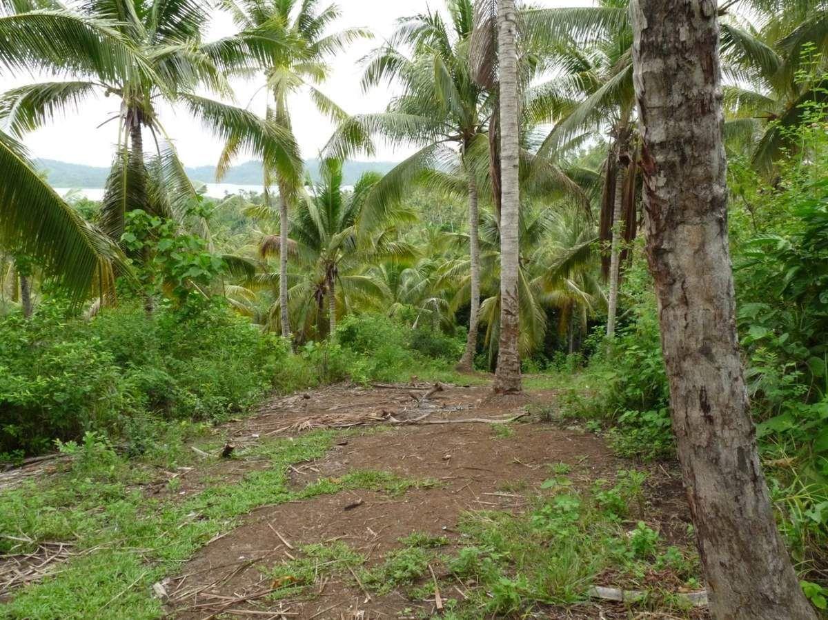 Katupat village, 30mn de trek dans la jungle pour atteindre une plaine, seul endroit d'où l'on peut envoyer des sms ou tenter de joindre un correspondant au téléphone...