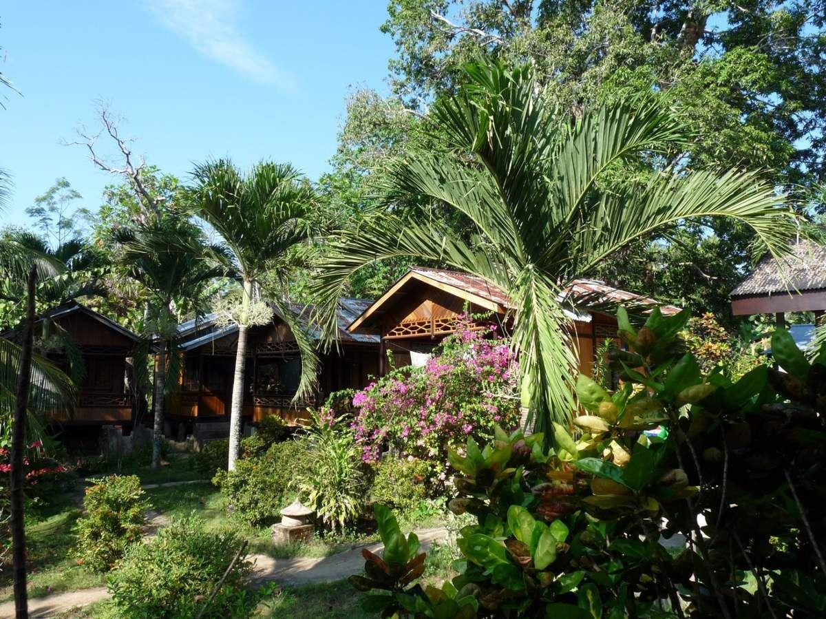 Sulawesi / Îles Bunaken