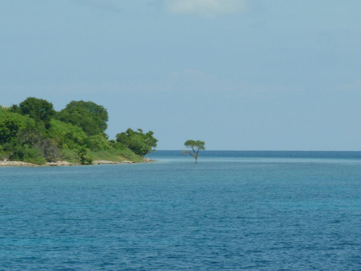 Entre Florès et Lombok : en mer de Satonda à Moyo
