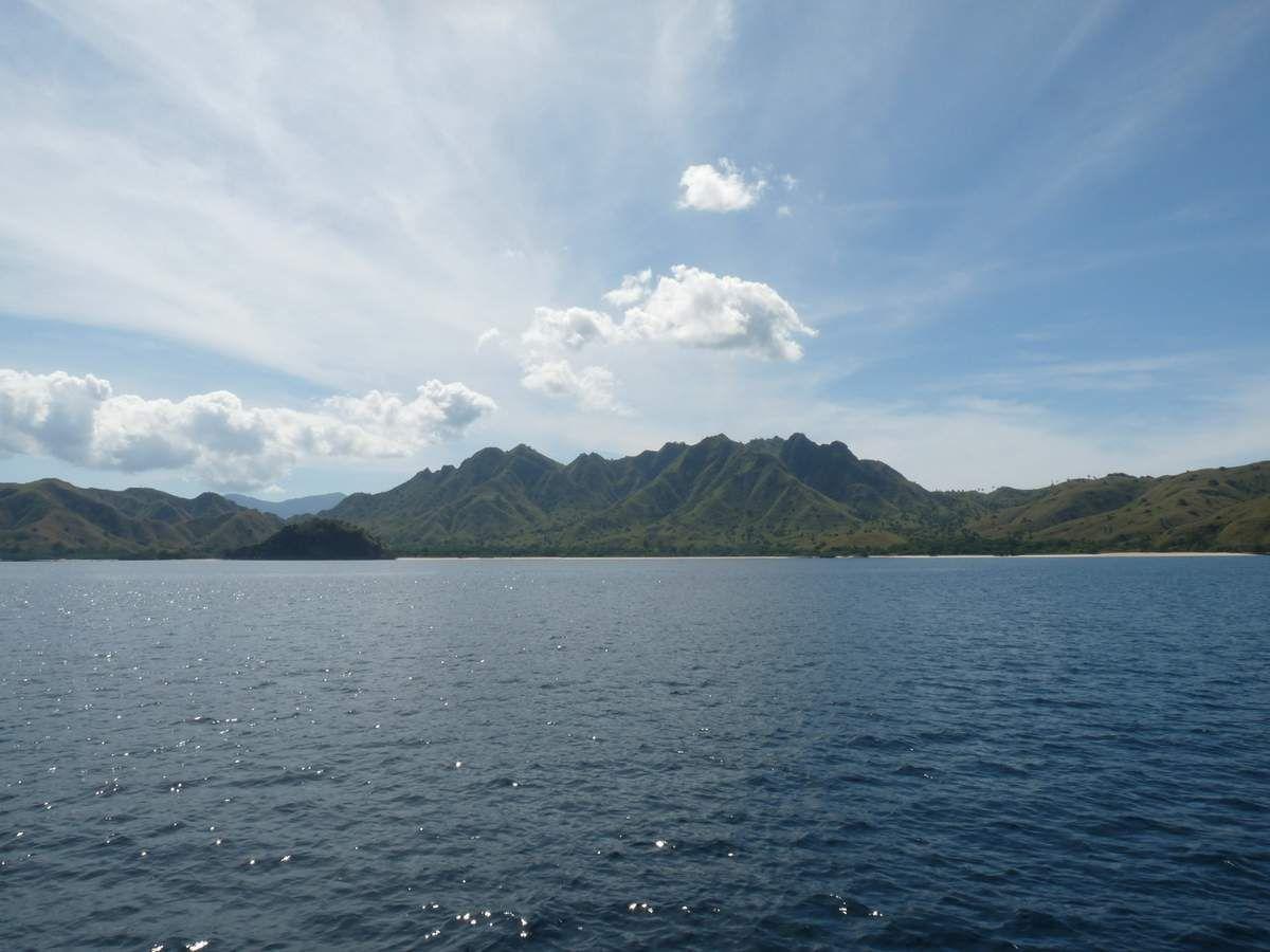 Entre Florès et Lombok : entre Rinca et Komodo