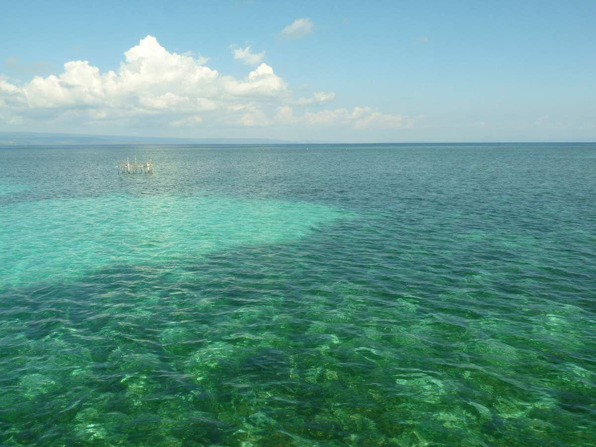 Entre Florès et Lombok : Moyo
