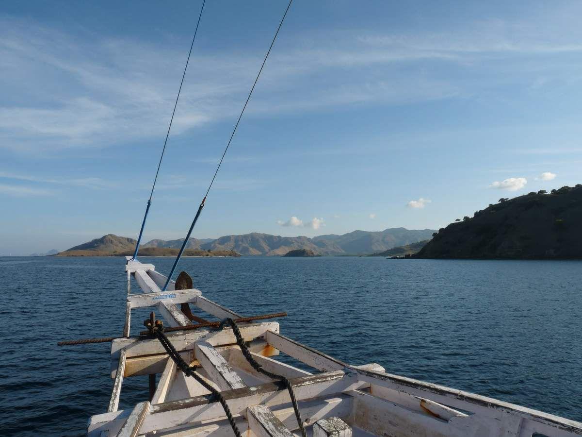 Entre Florès et Lombok : Kalong Island