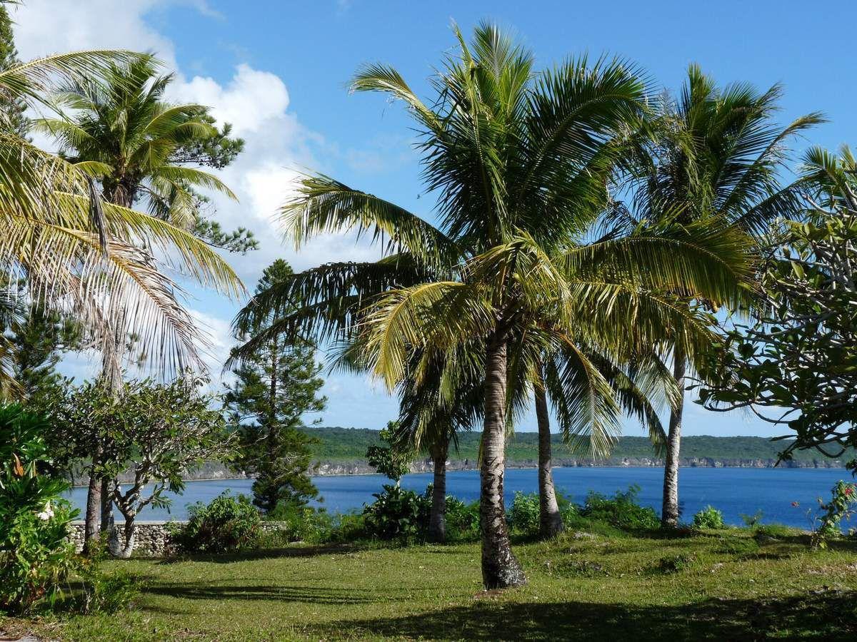 Lifou, marché de Wé, case traditionnelle, église, plage et Toutoute (coquillage géant du Pacifique)
