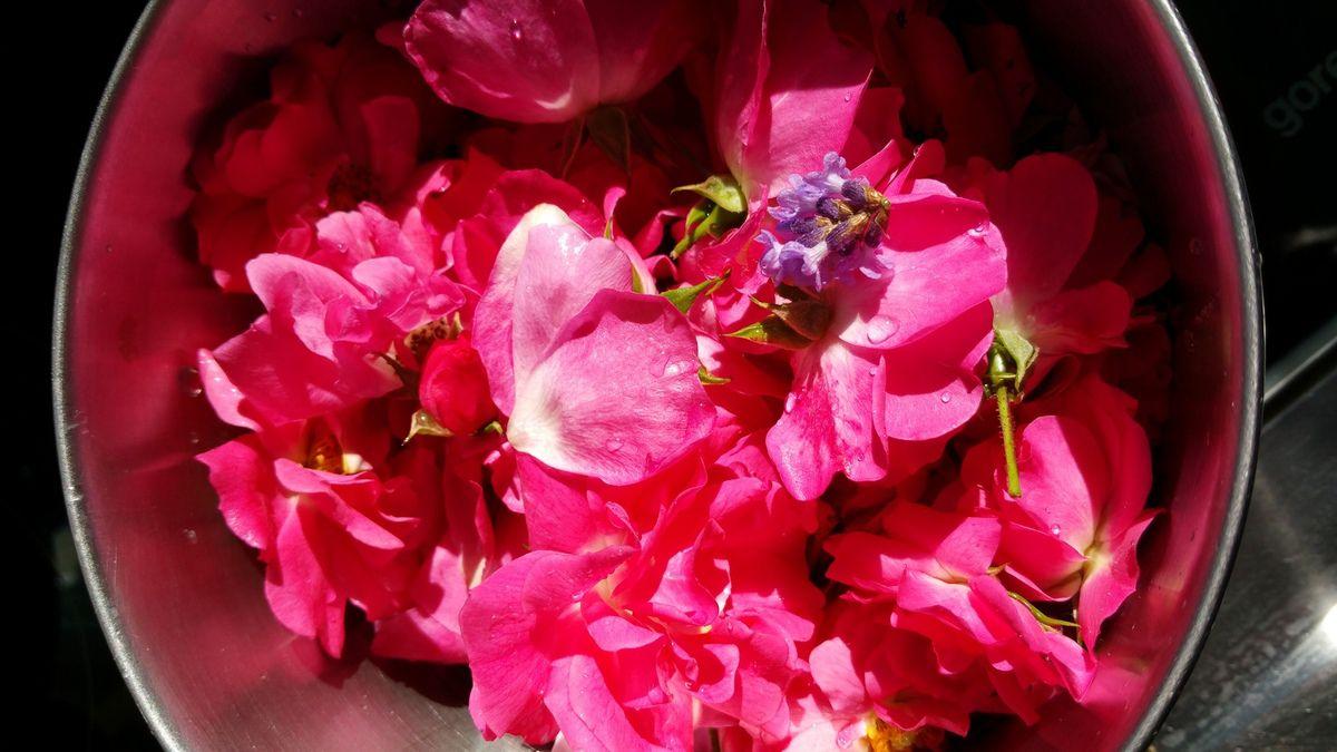 frisch am Morgen gepflückte Duft Rosenblätter und ein paar Lavendelblüten.