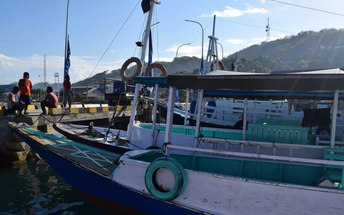 Boat trip to Komodo and Rinca