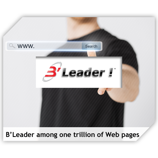 Become leader among one trillion of web pages