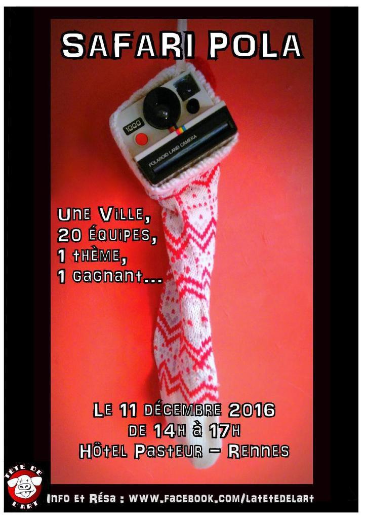 Expolaroïd - Même pas mort - Expo, Ateliers, Safari Pola, Bric à Brac - le dimanche 11 décembre de 14h à 18h