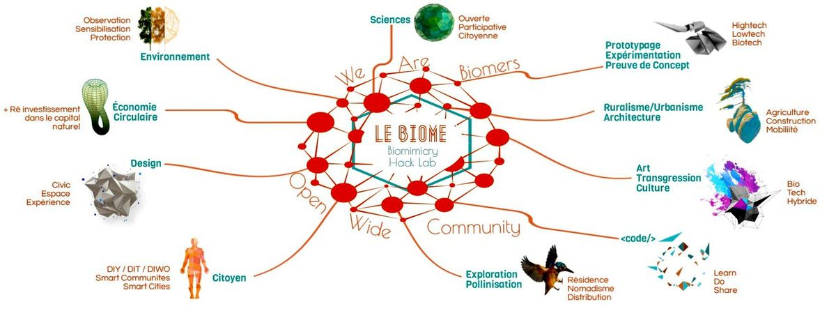 Laboratoire autour du Biomimètisme Open Source pour panser et concevoir la ville // Le Biome