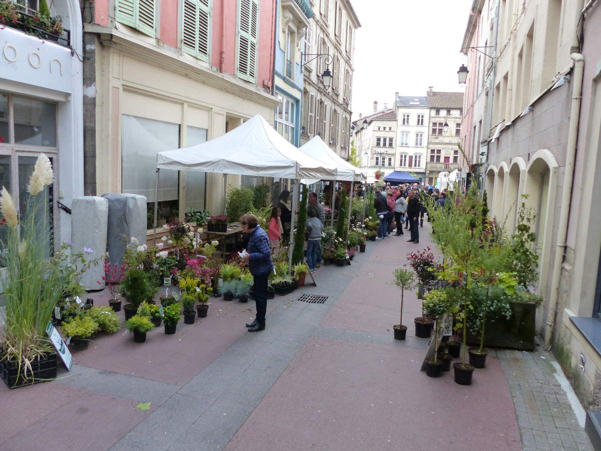 Des stands de fleuristes et arboriculteurs dans la rue de la Basilique