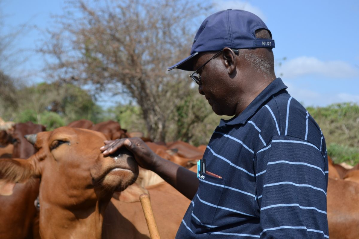 Towards changing the face of the ranching subsector in Taita-Taveta