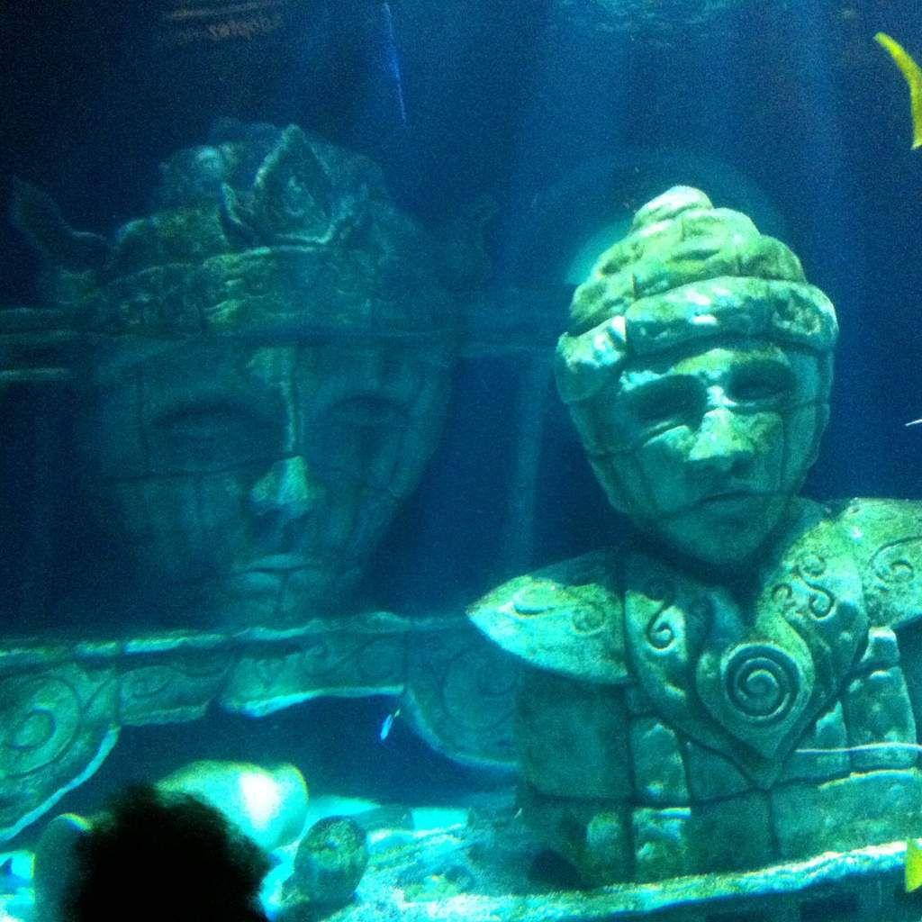 Aquarium Sea Life - Visite classe de maternelle