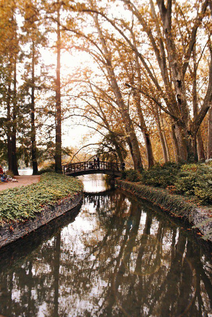 10 raisons d'adorer l'automne