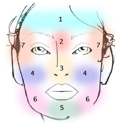 Le &quot&#x3B;FACE-MAPPING &quot&#x3B;