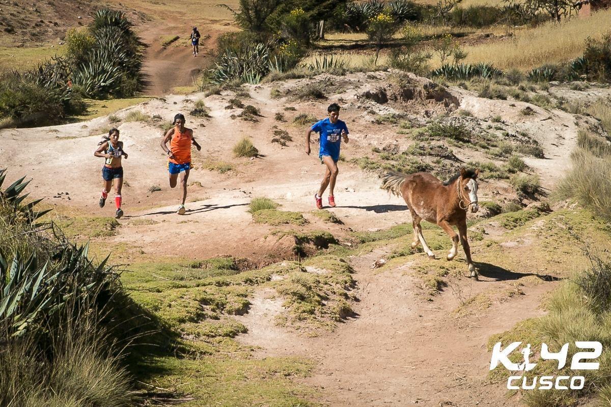 Pour terminer, une photo prise sur la course. Il n'y a qu'au Pérou que nous pouvons voir cela.