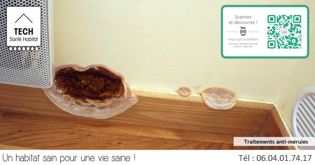 comment traiter les mrules dans - Condensation Dans Une Maison