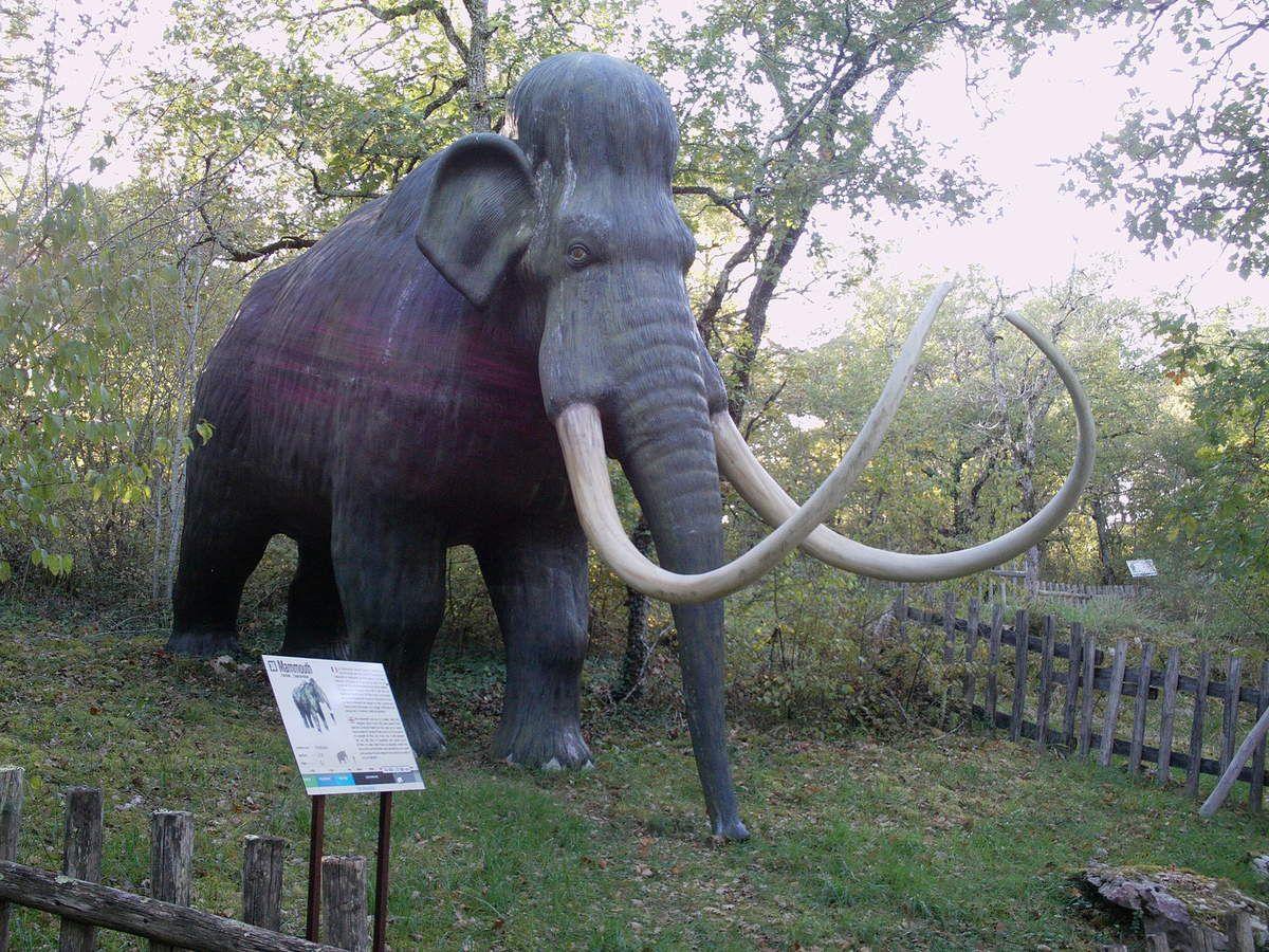 Voici l'Elasmotherium. Le Mammouth et l'Ours des cavernes.