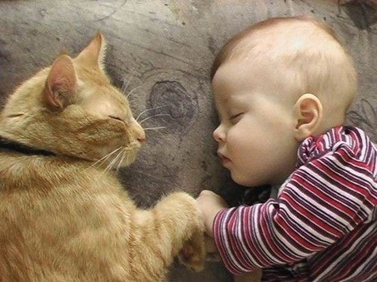 Un grand moment de tendresse.