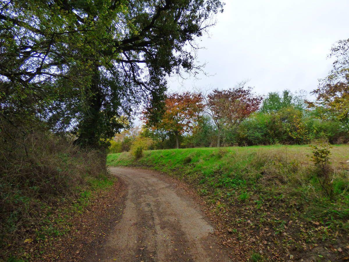 Un p'tit tour sur une colline, près de Toulouse.