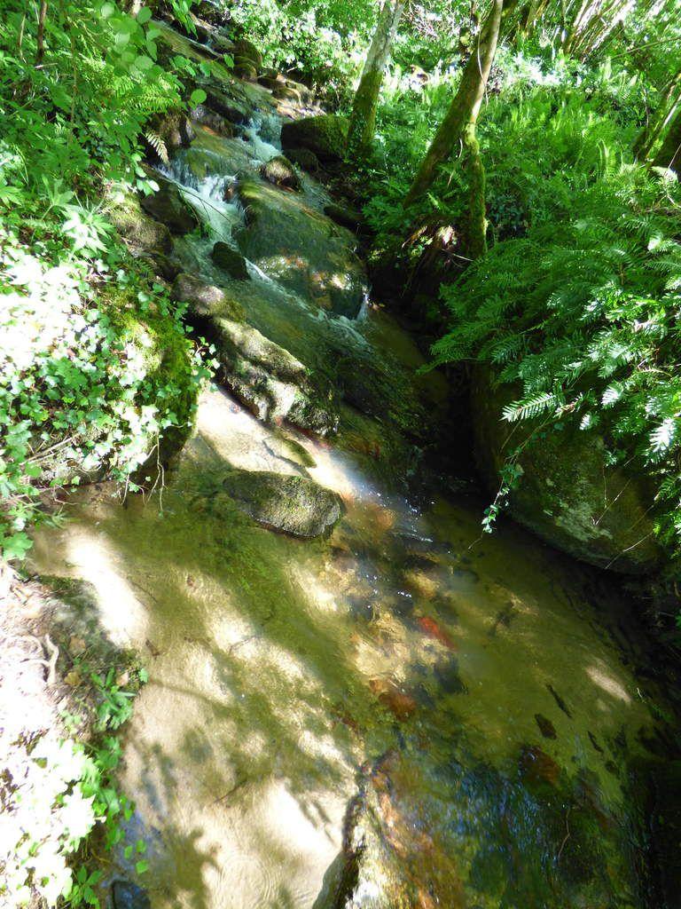Les cascades du Paradis à Burlats.