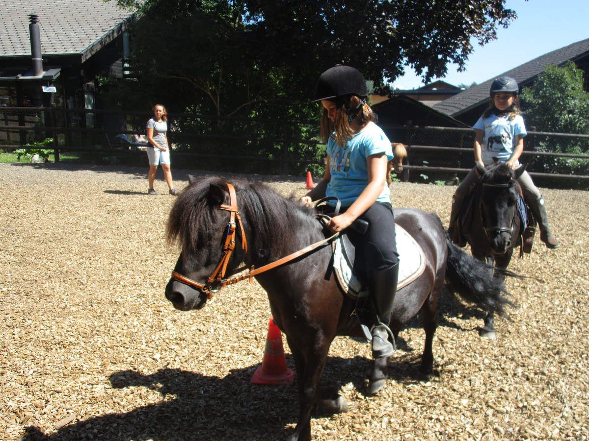 Camp Equitation