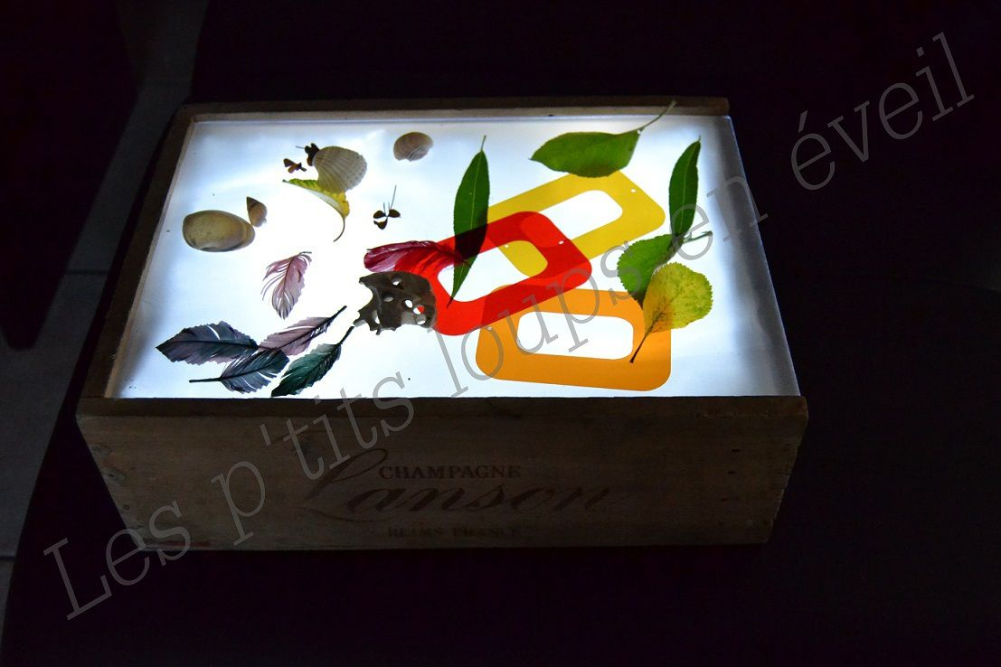 Plumes, feuilles, petites fleurs, coquillages, galet à trous et formes de couleurs en transparence pour ce premier essai