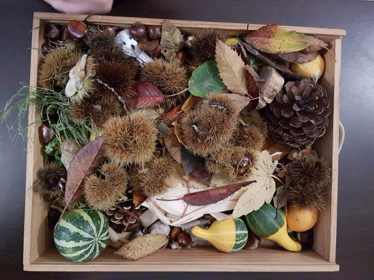 Bacs d'automne faits par leurs petites mains