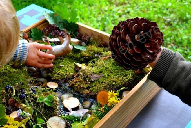 Bac sensoriel sur le thème de la forêt