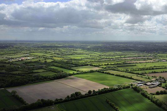 Cette terre humide et agraire- verte- ne peut pas être  bétonnée !