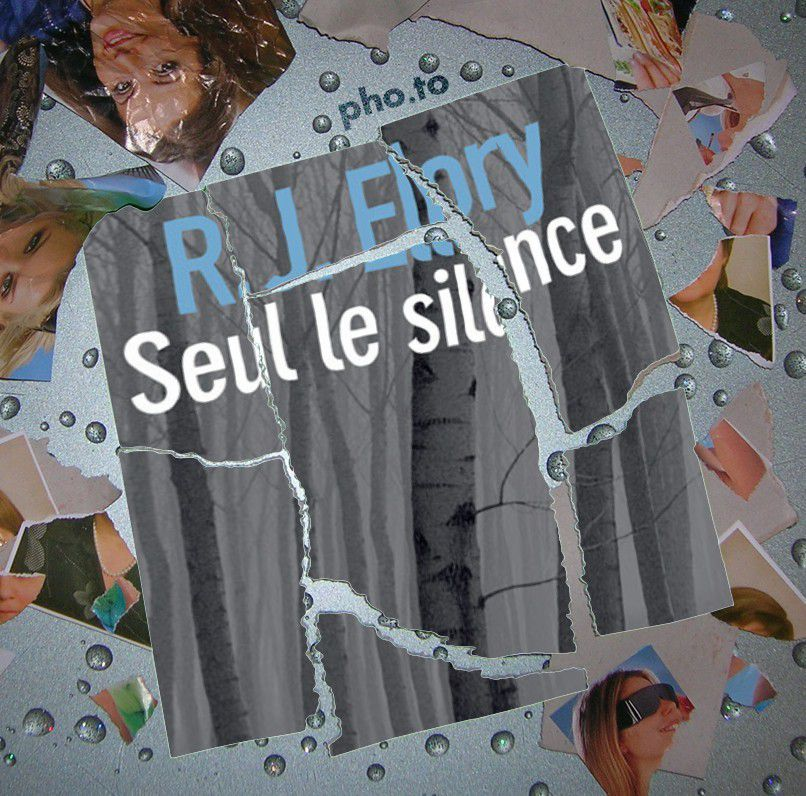 R.J Ellory - Seul le silence ♥♥♥