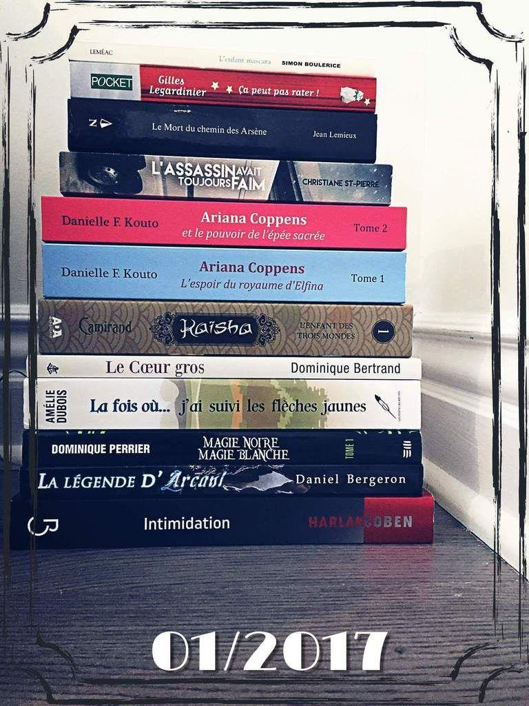 La Bookipile de Janvier