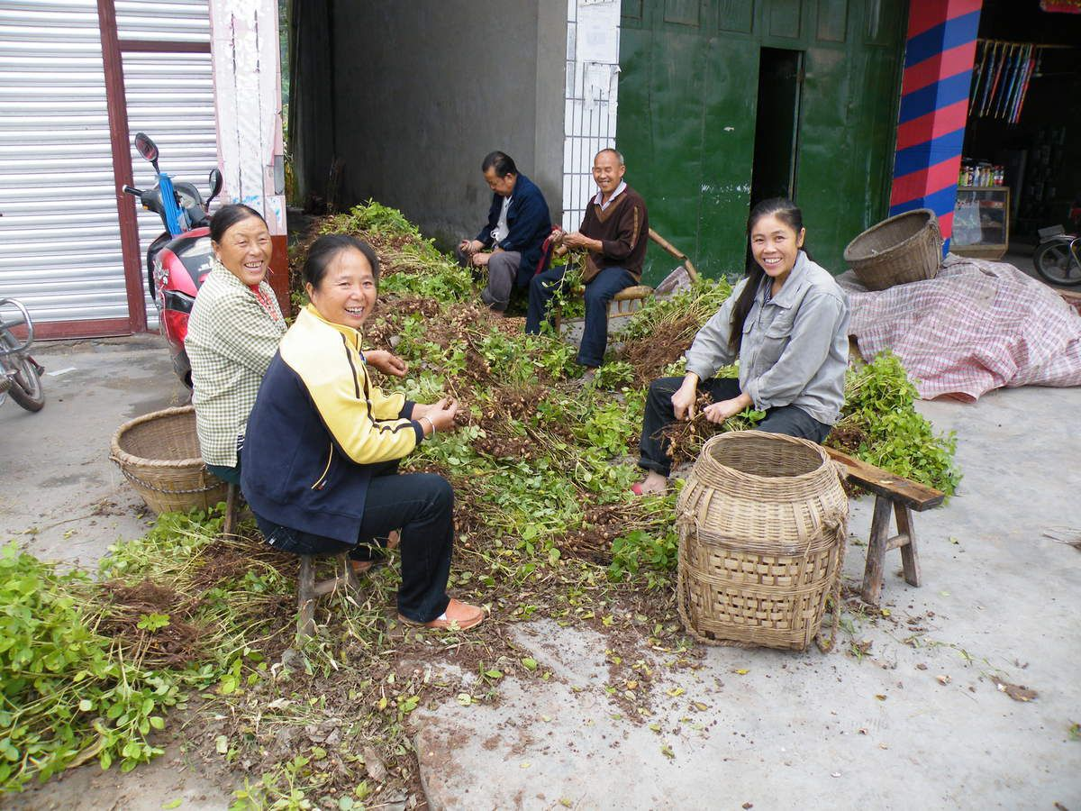vavoirayeur: Chengdu,la campagne