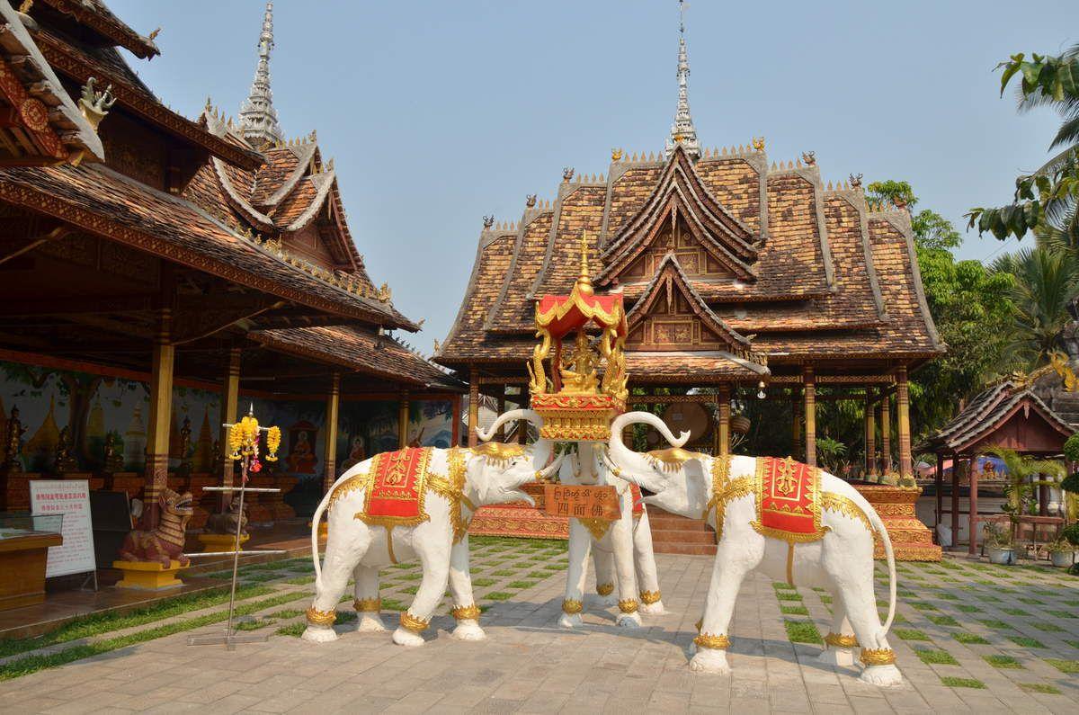 encore des éléphants ... et un temple !