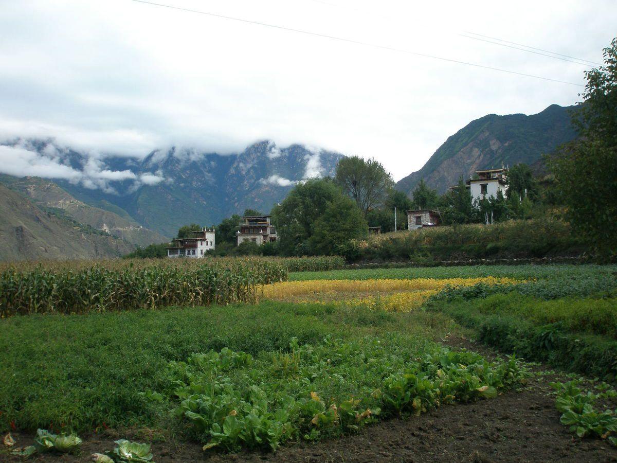 village de Zhonglu