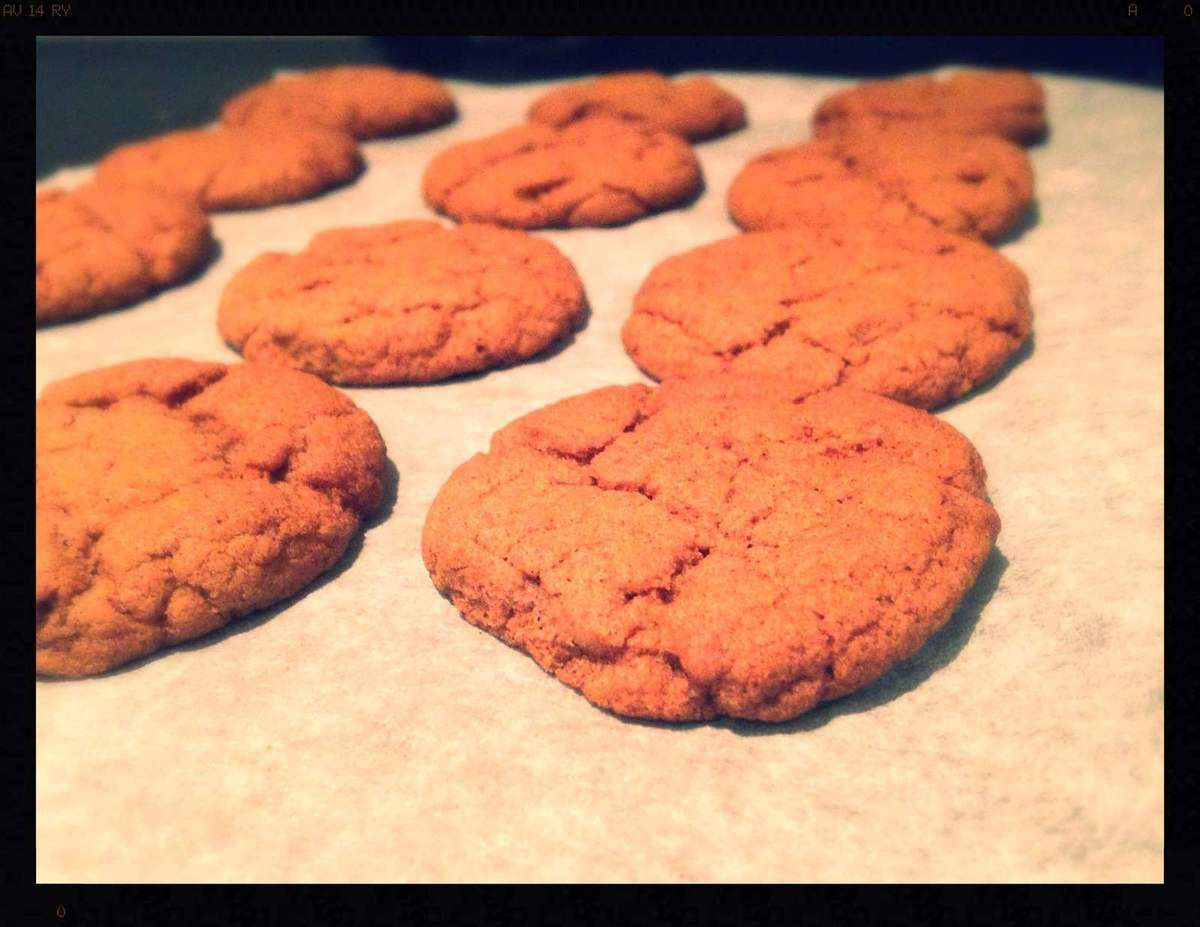 Northumbrian Biscuits