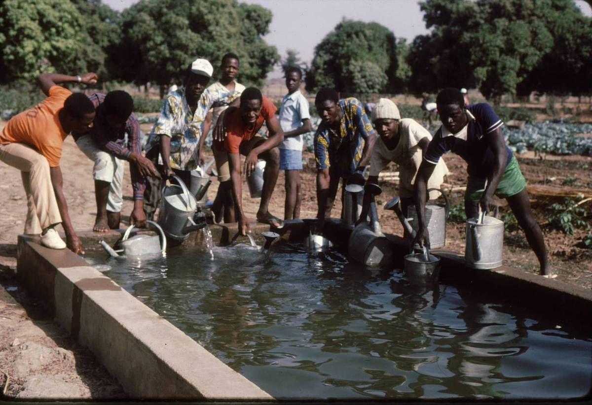 Le jardin potager du petit séminaire de Koulikoro