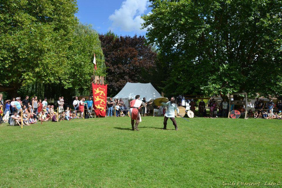Notre fête médiévale à Chauvigny - 17 et 18 Août 2014