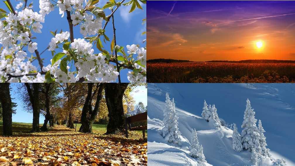 """Résultat de recherche d'images pour """"4 saisons"""""""