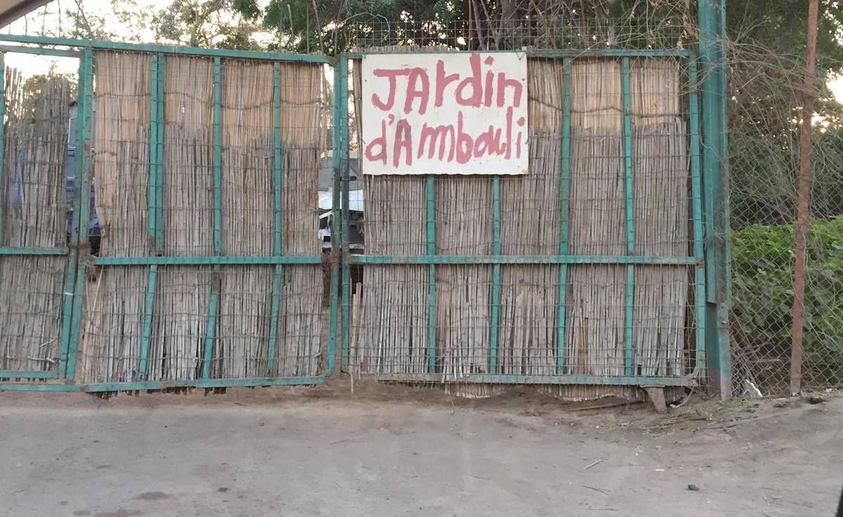 Jardin d'Ambouli - DJIBOUTI