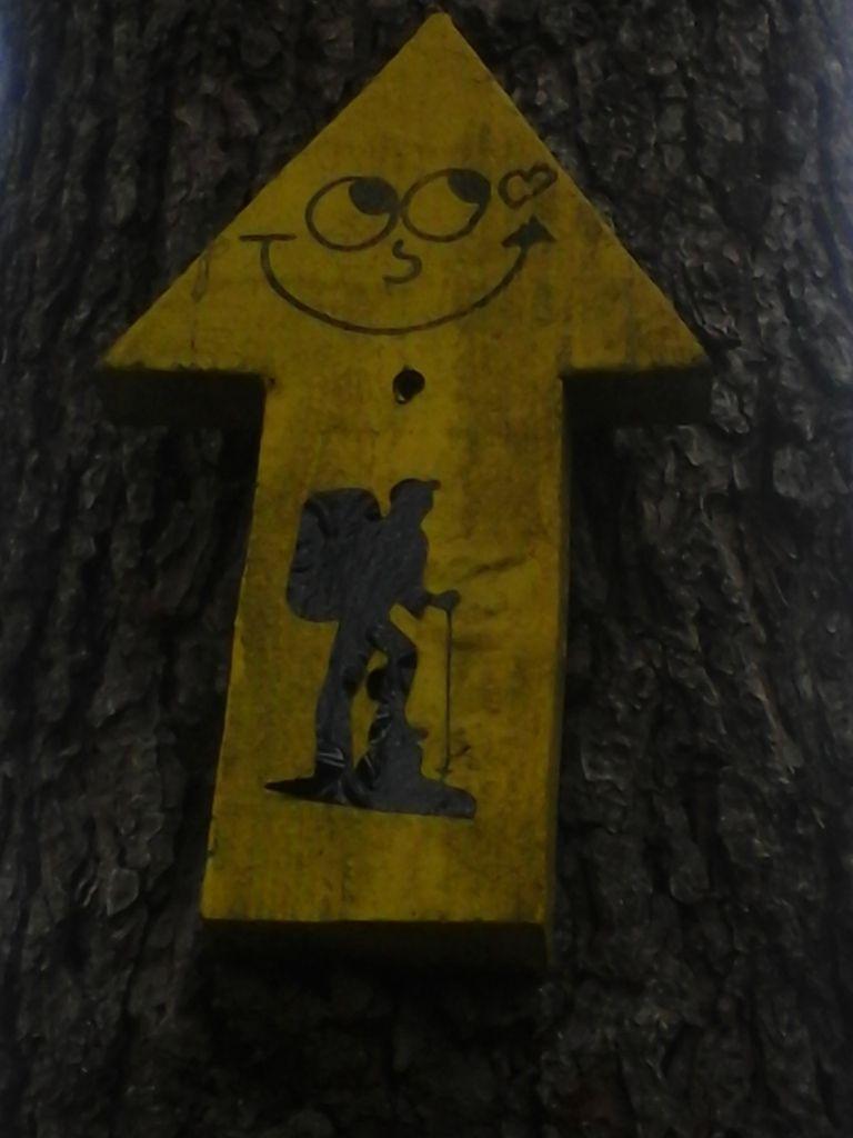 """En Galice,  même  les fameuses """"flechas amarillas"""" sourient !"""