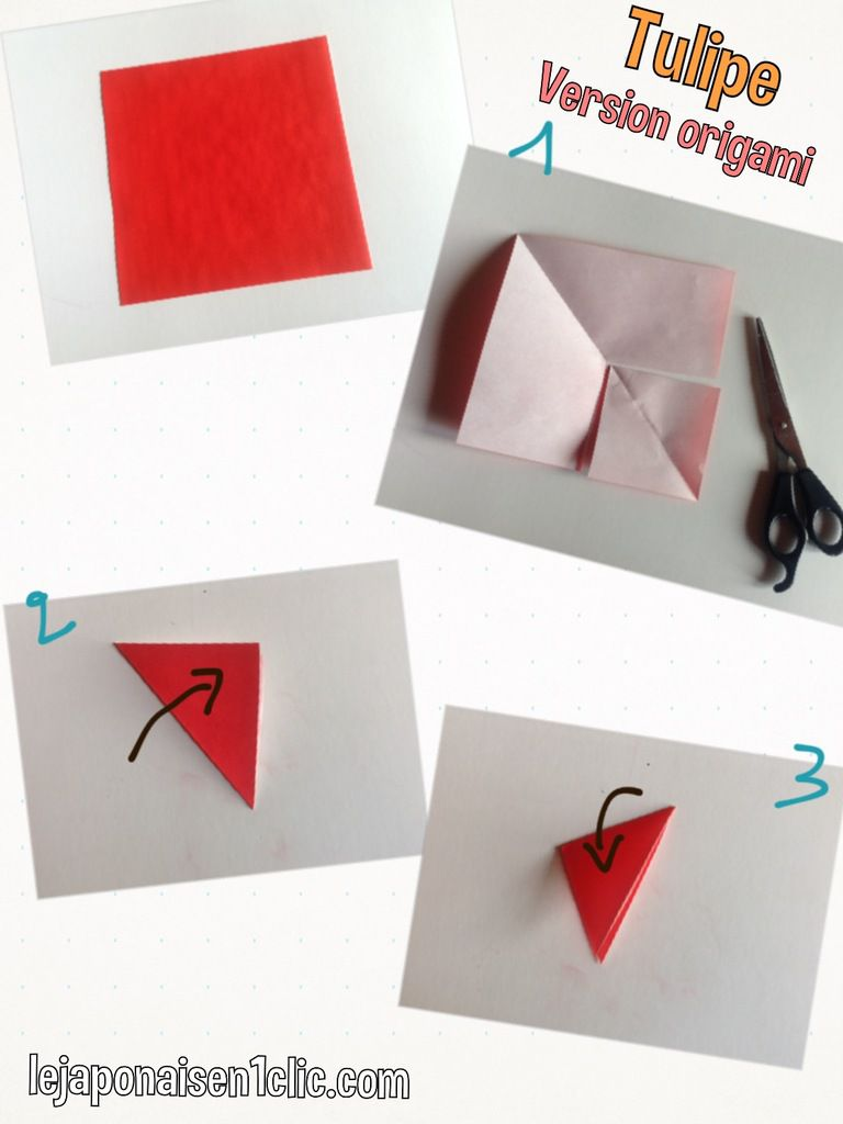 Origami : la tulipe