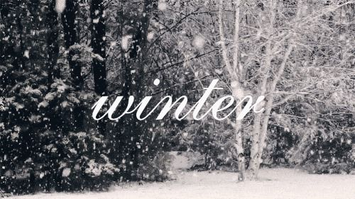 Snow,Chrismas,gift ... that's is Winter