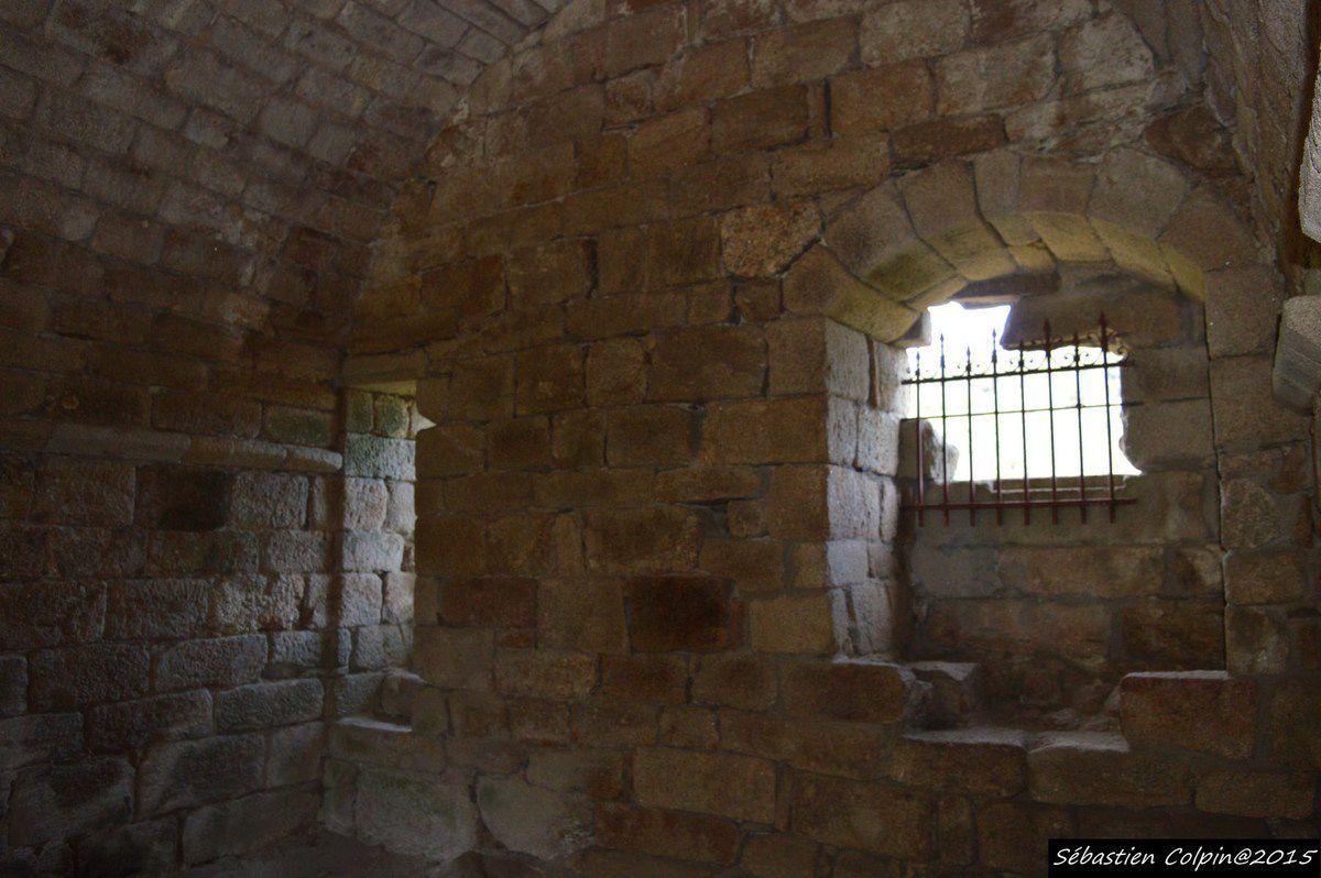 Les tours de Merle sont un ensemble de maisons fortes formant un castrum des XIIe et XVe siècles, situé à Saint-Geniez-ô-Merle, en Corrèze (France).  Les restes du château font l'objet d'un classement au titre des monuments historiques par arrêté du 30 juillet 1927.Du XIIe au XVe siècle, on voit les lignages seigneuriaux possesseurs du lieu édifier des tours, des hostels et des murs, constituant ainsi un castrum qui périclitera avec l'avènement de l'artillerie. En effet, le site pouvait facilement être bombardé des hauteurs avoisinantes. Au XIVe siècle, Merle comprend sept maisons fortes, deux chapelles et un village, possédés en indivision par sept seigneurs des familles de Merle, de Carbonnières, de Veyrac, et de Pestels. Pendant la guerre de Cent Ans, les Anglais prennent une tour et un château en 1371, puis doivent les restituer.  Les calvinistes prennent la place et y installent une garnison en 1574 &#x3B; ils en sont chassés deux ans plus tard par les co-seigneurs. Cependant le site est abandonné par ces derniers qui préfèrent vivre dans des lieux plus aimables et surtout plus accessibles. Il ne reste que des vestiges de ce castrum, réunion de maisons fortes qui datent du XIVe siècle ou avant. Existent encore : les piles ruinées de la maison de la garde du pont, l'emplacement du pont-levis de Veilhan, la tour de Noailles et la tour de Pestel. La maison de Fulcon de Merle est attestée en 1365 et il subsiste les emplacements de la maison dite de Veilhan et de la seconde chapelle Sainte-Anne bâtie en 1674, ainsi que les vestiges des tours donnés comme étant celles du commandeur de Saint-Léger, du prieur de Saint-Léger et de Saint-Bauzire.  Le site est ouvert toute l'année à la visite.