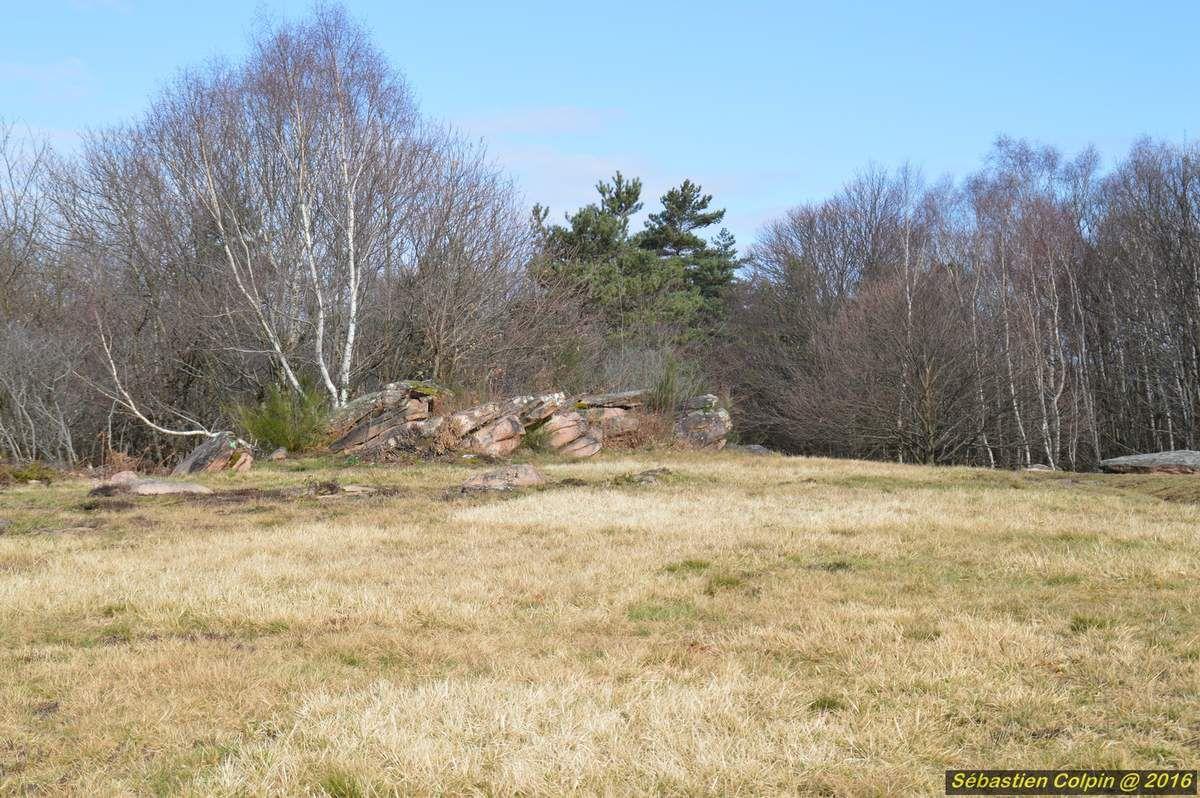 Situé sur la D.48 à 2,5 km au nord-ouest d'Aubazine, le site du puy de Pauliac offre un remarquable panorama de la région, avec, au nord, les Monédières, à l'ouest, la vallée de la Corréze et, vers le sud, les Causses. A proximité, des mégalithes verticaux délimitent une parcelle circulaire. Un sentier, tracé à travers les bruyères et les bois de châtaigniers, amène au sommet où l'on découvre une table d'orientation qui offre une large vue.