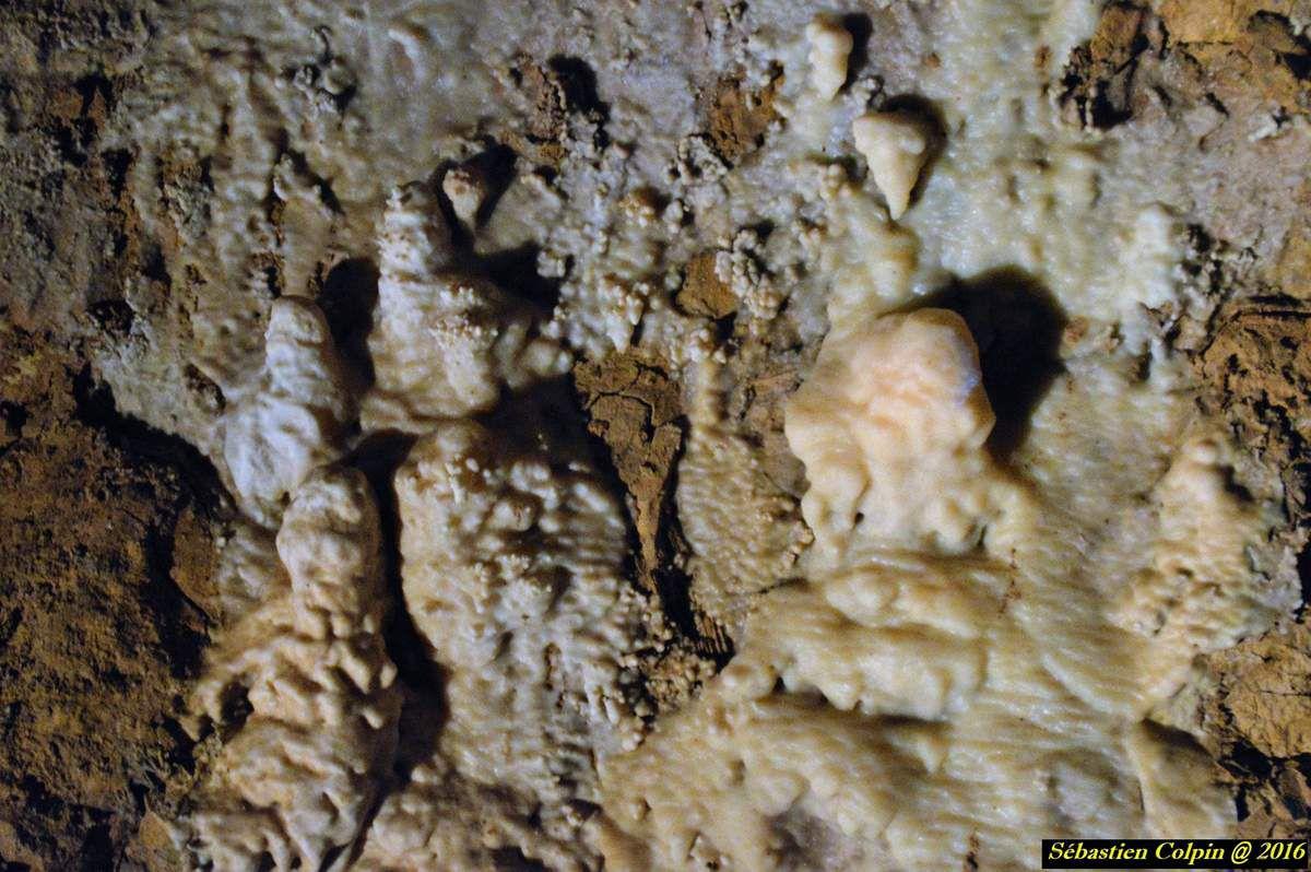 Armand Viré, solitaire, homme du silence du travail enfoui, forçat de la terre, passa plus d'années sous terre qu'en pleine lumière, plus de 60 ans après sa mort il en est toujours ainsi, puisse ce témoignage lui rendre un modeste hommage. Armand Viré homme du silence et de l'obscurité pourtant plus de 7 millions de personnes lui sont reconnaissant des merveilles qu'il a fait découvrir.  Les Grottes de Lacave sont le fruit du hasard, Viré creusait pour rejoindre la grotte de Saint Sol, pendant quinze mois son équipe creusa pendant 15 mois le destin joua avec eux et ce 28 Avril 1905 la Grotte s'offrit à eux, mais quelle grotte ? La grotte de Saint Sol ? Non !! Les grottes de Lacave sanctuaire inviolé se dévoilèrent aux premiers explorateurs, depuis plus de 7 millions de personnes ont visité ce lieu des temps passés.